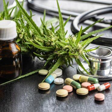 Израел с ново проучване за медицинското приложение на Канабис Сатива при хронична болка